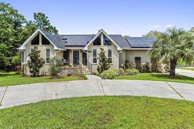 Ocean Springs Single Family Home For Sale: 13928 Puerto Dr
