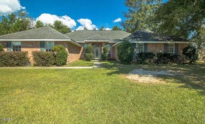 Gulfport Single Family Home For Sale: 11817 Magnolia Cv