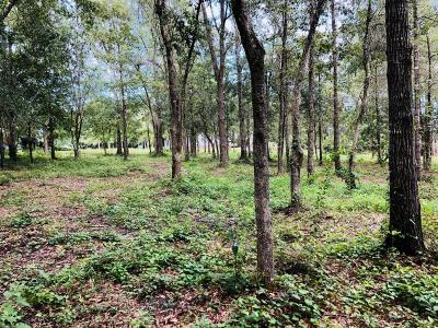 Pass Christian Residential Lots & Land For Sale: Lot 24 Woodland Dr