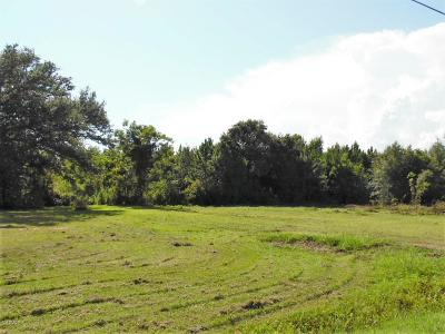 Residential Lots & Land For Sale: 105 Elliott Ave