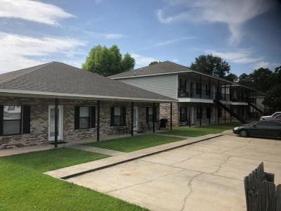 Biloxi MS Multi Family Home For Sale: $600,000