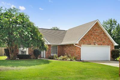 Gulfport Single Family Home For Sale: 15127 Audubon Lake Blvd