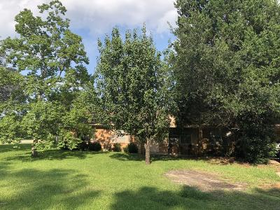 Ocean Springs Single Family Home For Sale: 1136 Oakleigh Rd