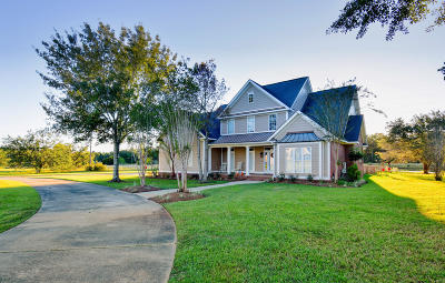 Gulfport Single Family Home For Sale: 12611 S Lake Forest Dr