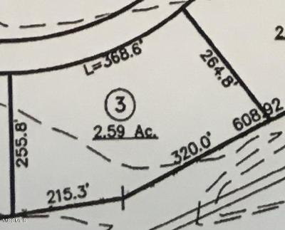 Residential Lots & Land For Sale: Lot 3 Menge Ave/Interstate 10