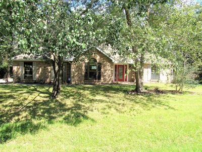 Diamondhead Single Family Home For Sale: 7352 Anela Dr