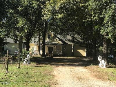 Gulfport Single Family Home For Sale: 11162 Ellis Dr