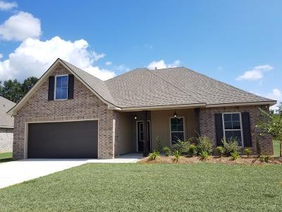 Gulfport Single Family Home For Sale: 15092 Belhaven St