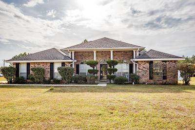 Ocean Springs Single Family Home For Sale: 13800 Virginia St