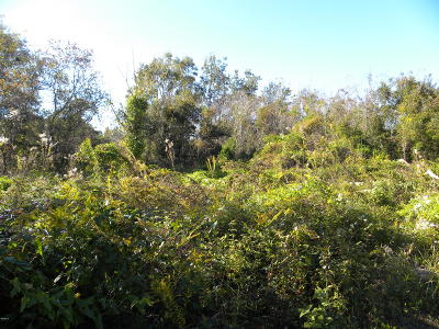Pass Christian Residential Lots & Land For Sale: 247 Woodman Ave
