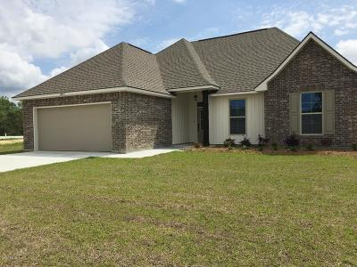 Gulfport Single Family Home For Sale: 16954 Esplanade Dr