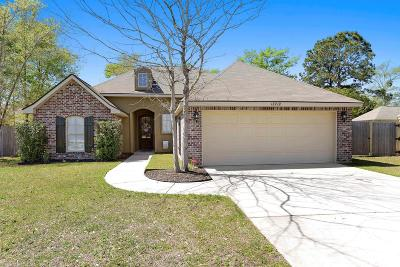 Gulfport Single Family Home For Sale: 13719 Ridgehaven Way