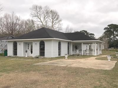 Ocean Springs Single Family Home For Sale: 9620 Theriot Ave