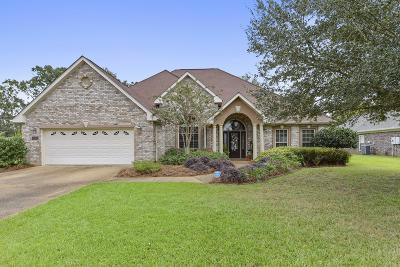 Gulfport Single Family Home For Sale: 13195 Chasae Ln