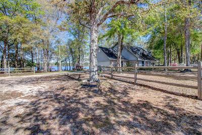 Gulfport Single Family Home For Sale: 11231 Magnolia Terrace Pl