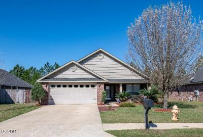 Gulfport Single Family Home For Sale: 14519 Canal Crossing Blvd