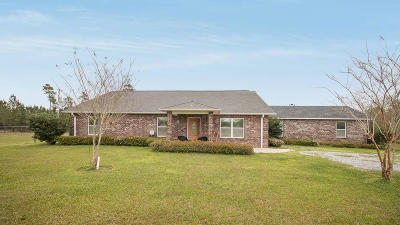 Gulfport Single Family Home For Sale: 13520 Alcede Lizana Rd