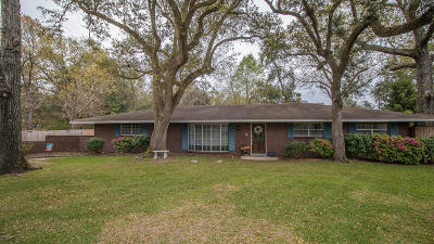 Long Beach Single Family Home For Sale: 132 Pirate Ave