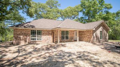 Saucier Single Family Home For Sale: 13034 Teague Rd