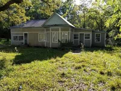 Gulfport Single Family Home For Sale: 729 Tegarden Rd