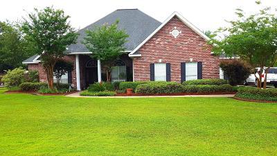 Gulfport Single Family Home For Sale: 14142 N White Swan Cv