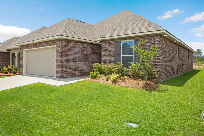 Ocean Springs Single Family Home For Sale: 475 Palm Breeze Dr