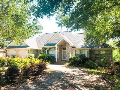 Ocean Springs Single Family Home For Sale: 700 Tantallon Dr