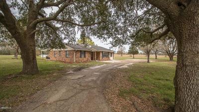 Gulfport Single Family Home For Sale: 21292 Mennonite Rd