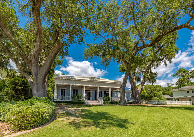 Ocean Springs Single Family Home For Sale: 227 Front Beach Dr