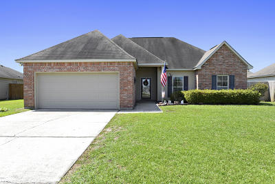 Gulfport Single Family Home For Sale: 16951 Acron St