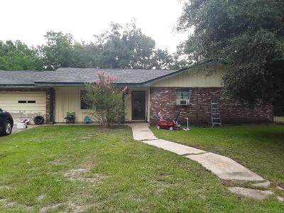 Long Beach Single Family Home For Sale: 703 N Seal Ave