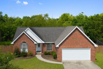 gulfport Single Family Home For Sale: 14147 Lucky Mays Rd