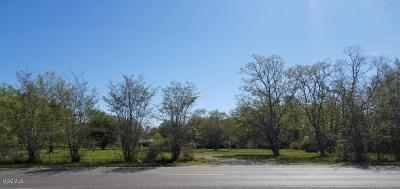 Residential Lots & Land For Sale: 13100 Hudson Krohn Rd