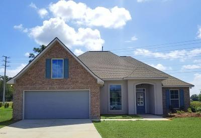 Gulfport Single Family Home For Sale: 15034 Belhaven St