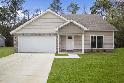 Gulfport Single Family Home For Sale: 15021 Audubon Lake Blvd