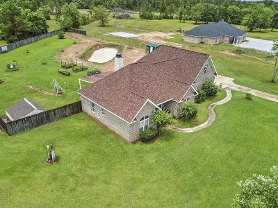Gulfport Single Family Home For Sale: 16894 Ty Ridge Rd