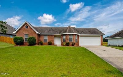 Gulfport Single Family Home For Sale: 15026 Audubon Lake Blvd