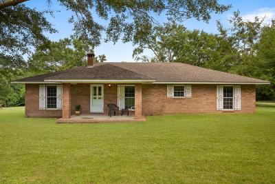 Ocean Springs Single Family Home For Sale: 13504 Old Biloxi Rd