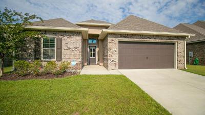 Biloxi Single Family Home For Sale: 892 Reunion Place Cir