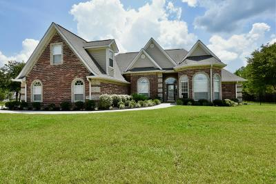 Gulfport Single Family Home For Sale: 15079 Camp Ln