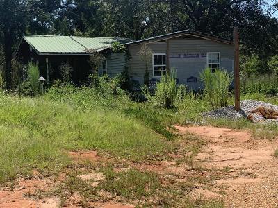 Saucier Single Family Home For Sale: 13554 Byrnes Dr