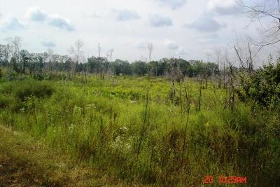Winston County Residential Lots & Land For Sale: Bethel Rd