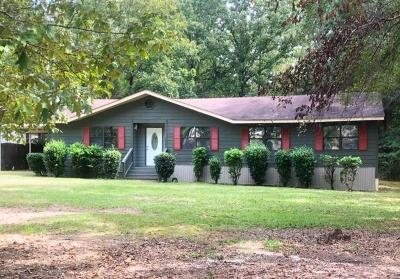 Sturgis Single Family Home For Sale: 1255 Taylor Rd