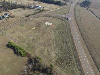 Winston County Residential Lots & Land For Sale: South Church Avenue