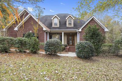 Big Bay Lake Single Family Home For Sale: 18 Pebble Cir.