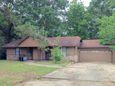 Hattiesburg Single Family Home For Sale: 106 Ray Bridge