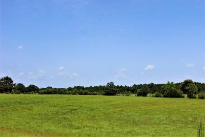 Seminary, Sumrall Residential Lots & Land For Sale: Lot 2 Newman Camp Rd.