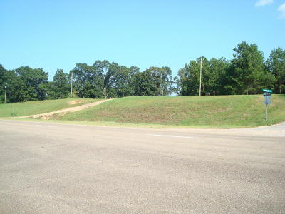 Seminary, Sumrall Residential Lots & Land For Sale: Hwy 98