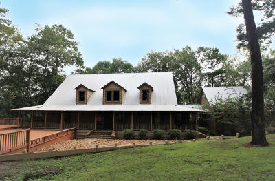Petal, Purvis Single Family Home For Sale: 4293 Old Hwy 11