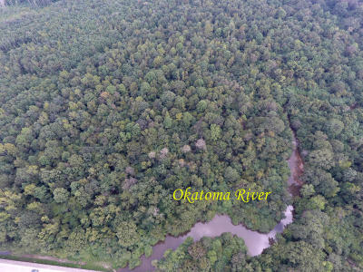 Covington County Residential Lots & Land For Sale: Hwy 35